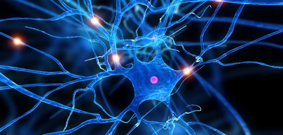 sclerosi multipla cura