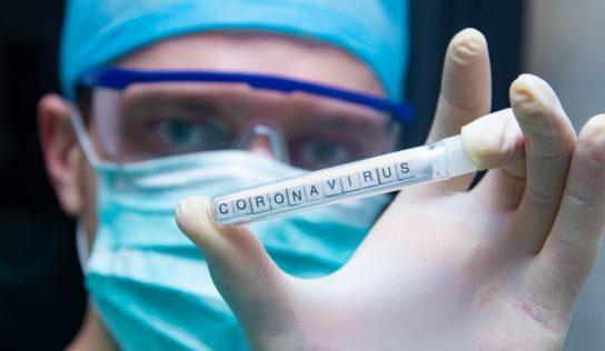 Coronavirus: covid19 si spegne da solo.