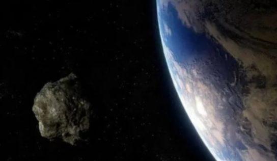 Per la terra l'estinzione di massa.