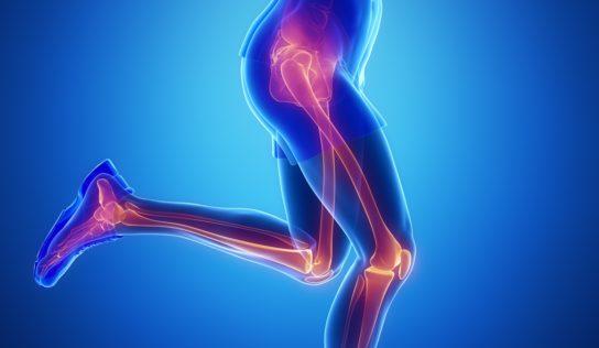 Rigenerare la cartilagine di anca e ginocchio con la menta piperita.