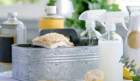 Detergente naturale sgrassante , liquido e in crema.