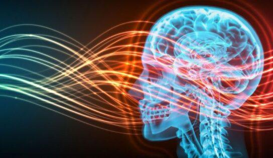 Come evitare le onde elettromagnetiche e lo stress causato da queste