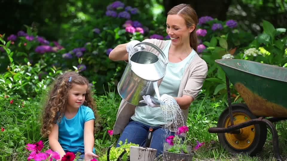 innaffiare le piante durante le vacanze