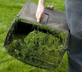 Come utilizzare l'erba tagliata dopo la falciatura.