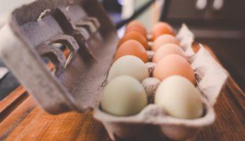 Come conservare le uova nel modo giusto.