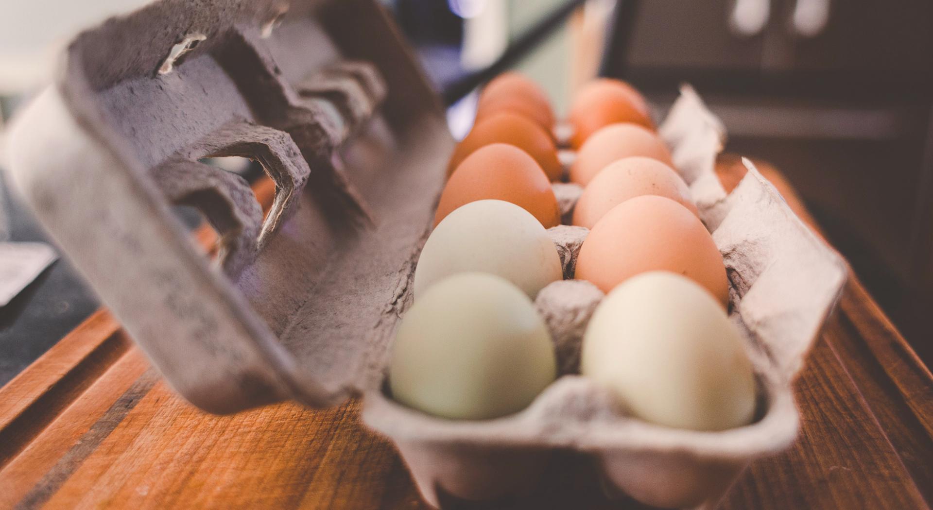 Come conservare le uova nel modo giusto